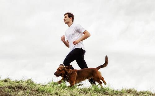 ورزش سگ دوانی چیست؟