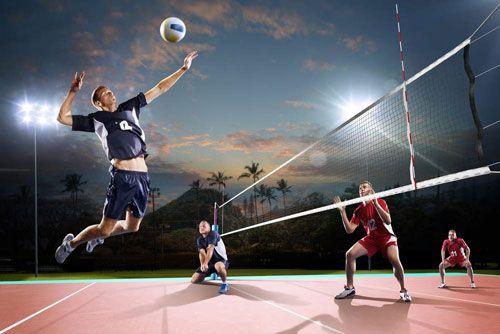بهترین ورزشها برای شرط بندی کدامند؟